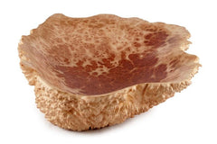 Small Natural Edge Red Mallee Wooden Burl Bowl
