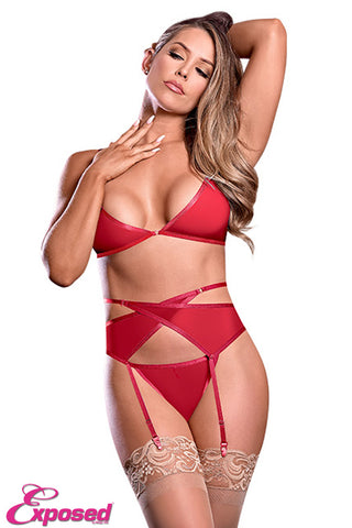 EXPOSED LINGERIE BRA GARTER AND PANTY SET (RED)