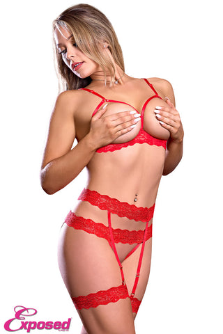 EXPOSED LINGERIE BRA GARTER AND CROTCHLESS PANTY