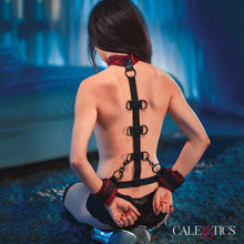 Load image into Gallery viewer, SCANDAL COLLAR BODY RESTRAINTS