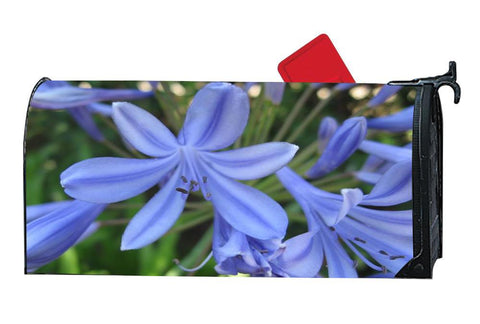 Agapanthus Flower Decorative Mailbox Covers
