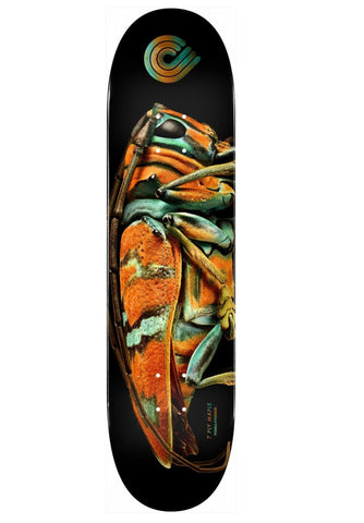 Powell Biss Jewel Beetle PP Deck 9.0