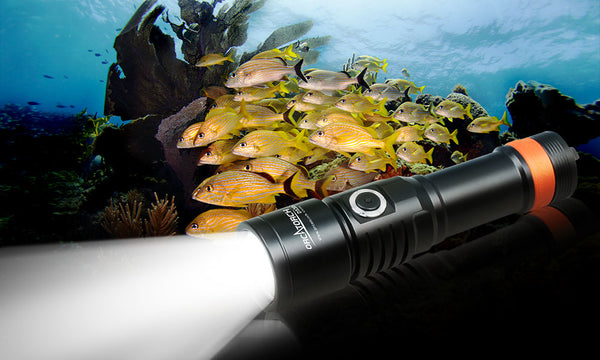 OrcaTorch D530V Underwater Video Light