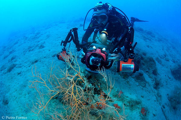 OrcaTorch D910V on sandy bottom at 35 m of depth (photo by P.Formis)