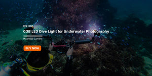 OrcaTorch D910V Video Light for Underwater Photography