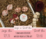Penny's Picks - Exclusive Bow Subscription Box *MAY* PRE-ORDER*