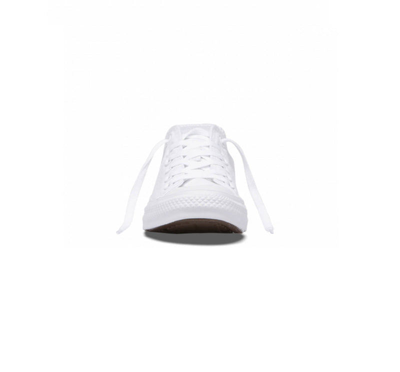 Chuck Taylor All Star Seasonal Low Top - Unisex