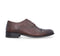 Barefoot Brown Formal Heel For Men 3850-BR