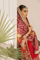 Formal Lehenga - Red & Red (MX-10)