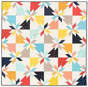 Block-Buster Quilts - I Love Star Blocks: 16 Quilts from an All-Time Favorite Block by Karen M. Burns 4
