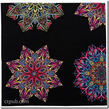 Fabricadabra - Simple Quilts Complex Fabric: Discover the Hidden Potential in Your Stash by Paula Nadelstern 2
