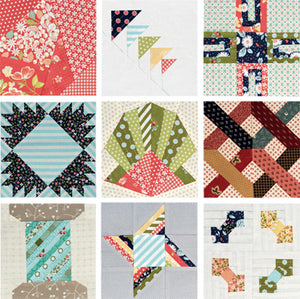 The Splendid Sampler: 100 Spectacular Blocks from a Community of Quilters by Pat Sloan & Jane Davidson 2