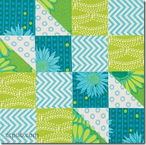 Make Your First Quilt With Alex Anderson: BeginnerÕs Simple Step-by-Step Visual Guide 3