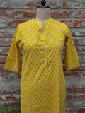 Chhipa Hand Sequins Work Pure Cotton Kurta
