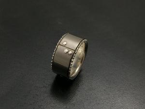 Titanium Rivets and Grooves Band with Sterling Silver Liner