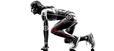 ANKLE MECHANICS AND GAIT CYCLE