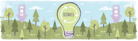 Biomass and forest