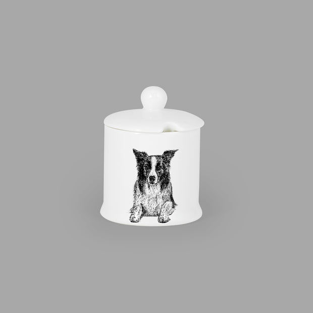 BORDER COLLIE - CONDIMENT JAR (150ml/9cm HIGH) - doggily