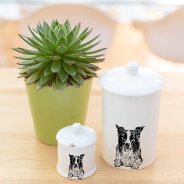 BORDER COLLIE - TREAT / STORAGE JAR (900ml/18cm HIGH) - doggily
