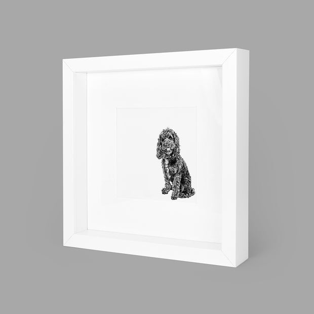 COCKAPOO BOX-FRAMED PRINT - WHITE - 23x23CM - doggily