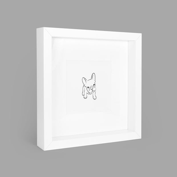 FABULOUS FRENCHIE BOX-FRAMED PRINT - WHITE - 23x23CM - doggily