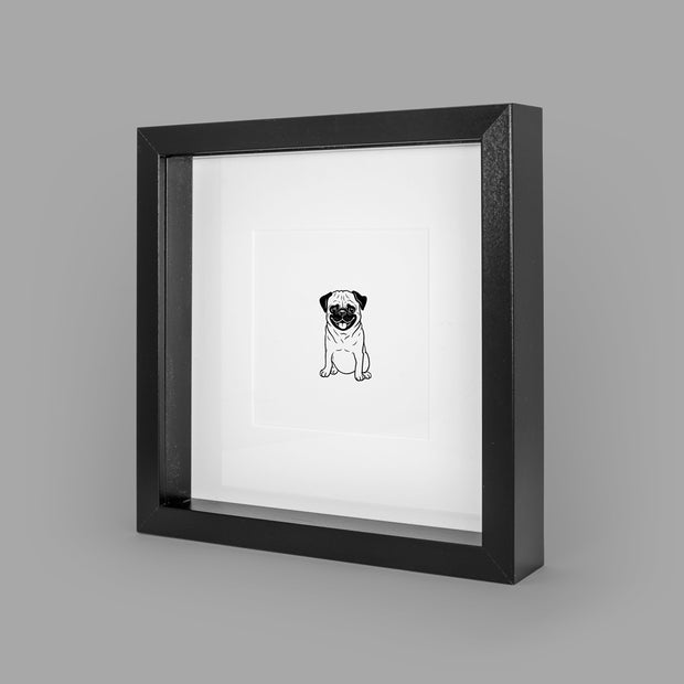 PAMPERED PUG BOX-FRAMED PRINT - BLACK - 23x23CM - doggily