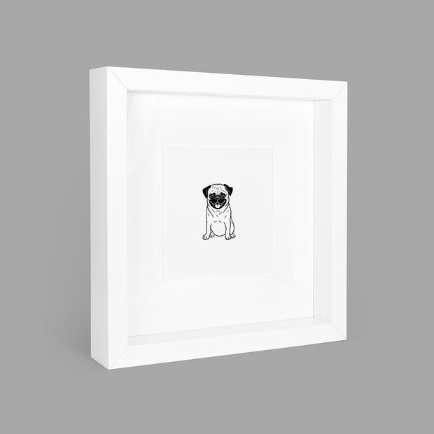 PAMPERED PUG BOX-FRAMED PRINT - WHITE - 23x23CM - doggily