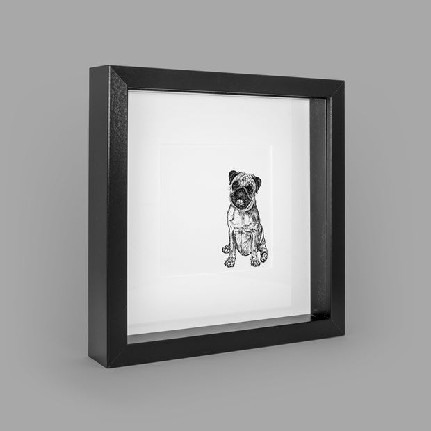PUG BOX-FRAMED PRINT - BLACK - 23x23CM - doggily