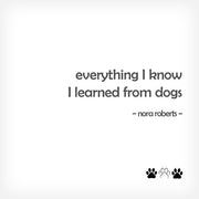 """EVERYTHING I KNOW..."" BOX-FRAMED PRINT - doggily"