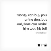 "MONEY CAN BUY YOU..."" BOX-FRAMED PRINT - doggily"