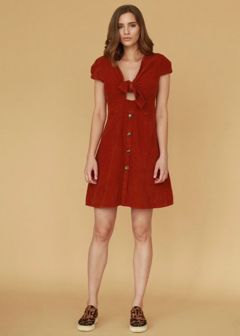 Bianca Brick Corduroy Dress