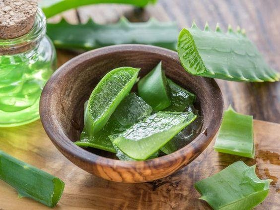 Should Aloe Vera Be Used On Hair Daily
