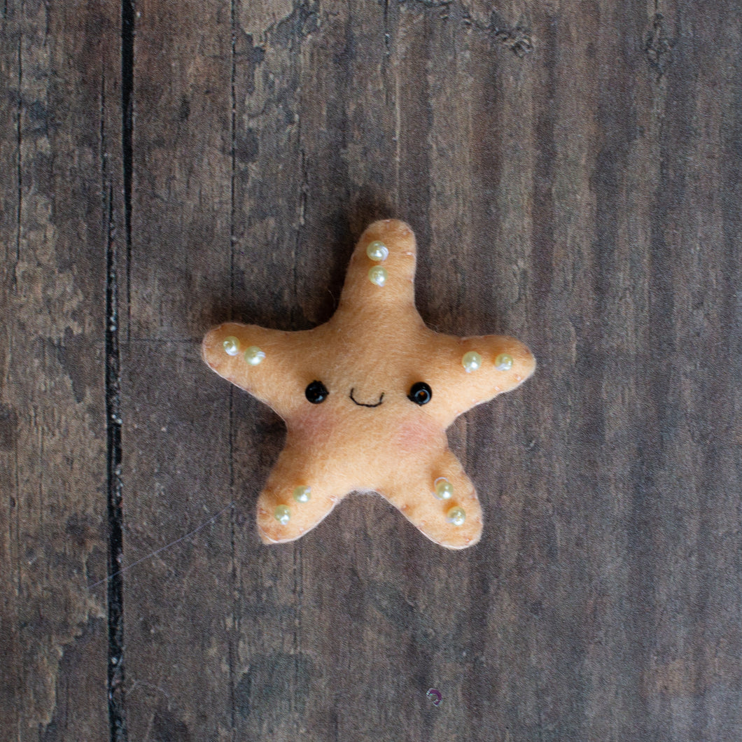 Tiny starfish