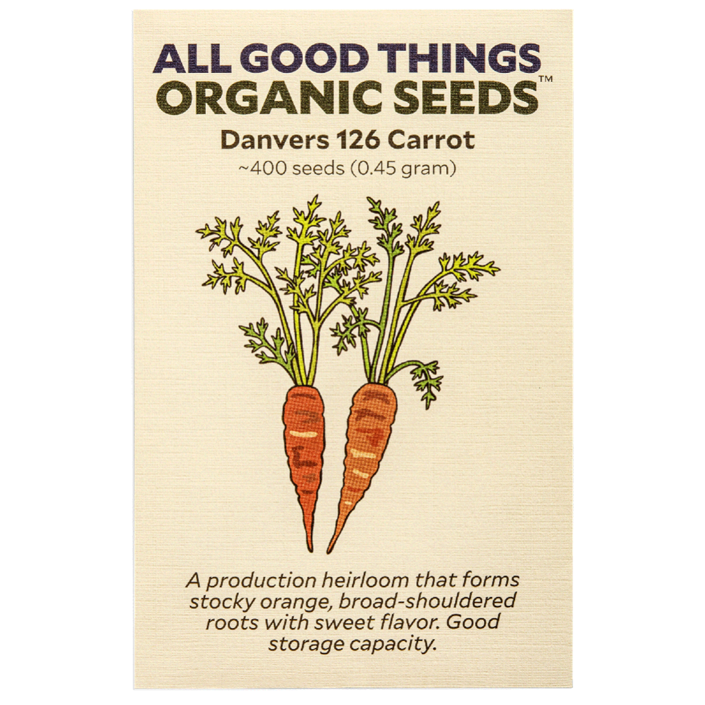 All Good Things Organic Seeds Danvers 126 Carrot