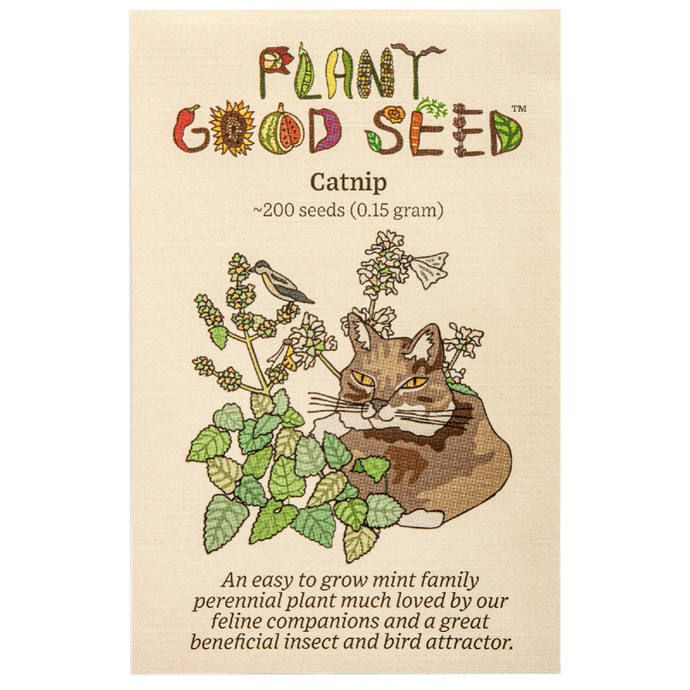 Plant Good Seed Catnip