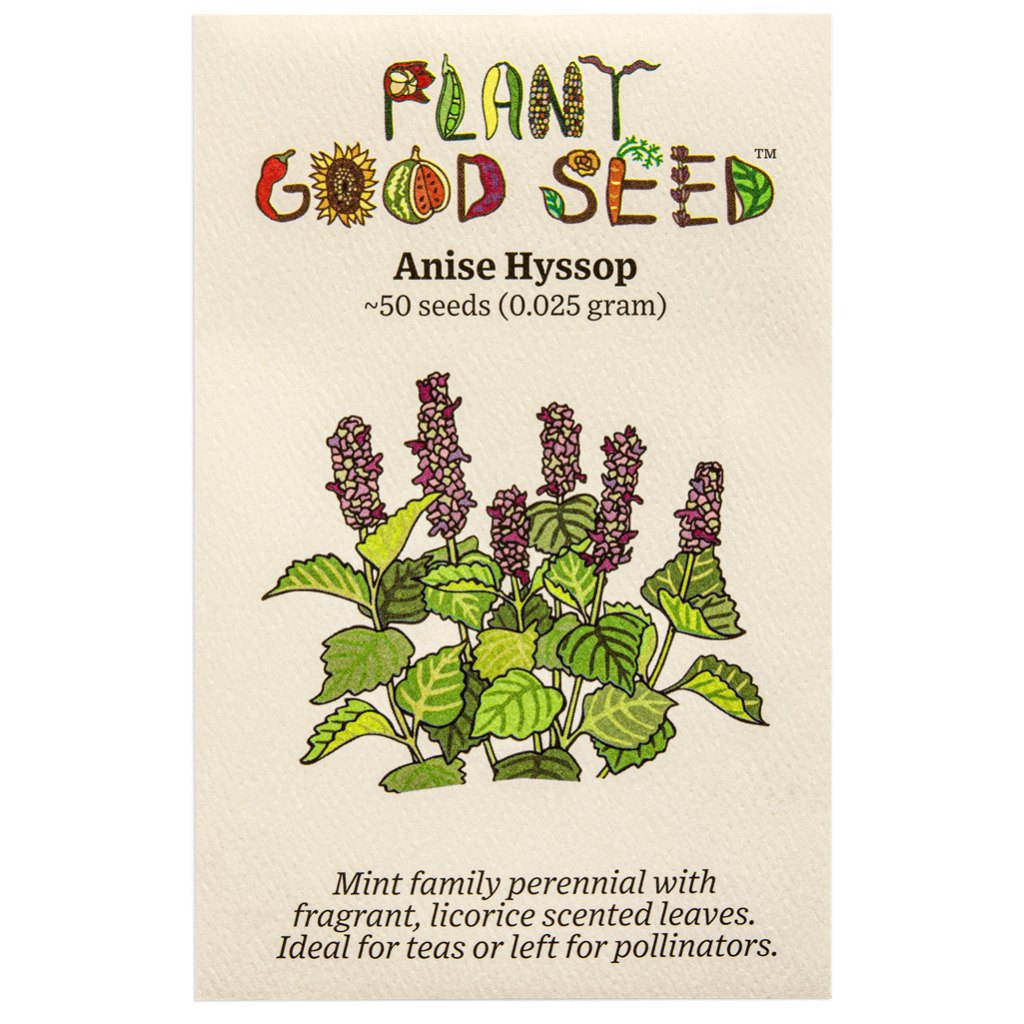 Plant Good Seed Anise Hyssop