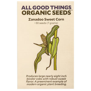 All Good Things Organic Seeds Zanadoo Sweet Corn