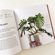 Load image into Gallery viewer, Little Book Big Plants