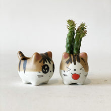 Load image into Gallery viewer, Mini Kitty Pot