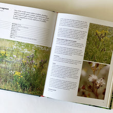 Load image into Gallery viewer, Wild About Weeds Garden Design with Rebel Plants Jack Wallington