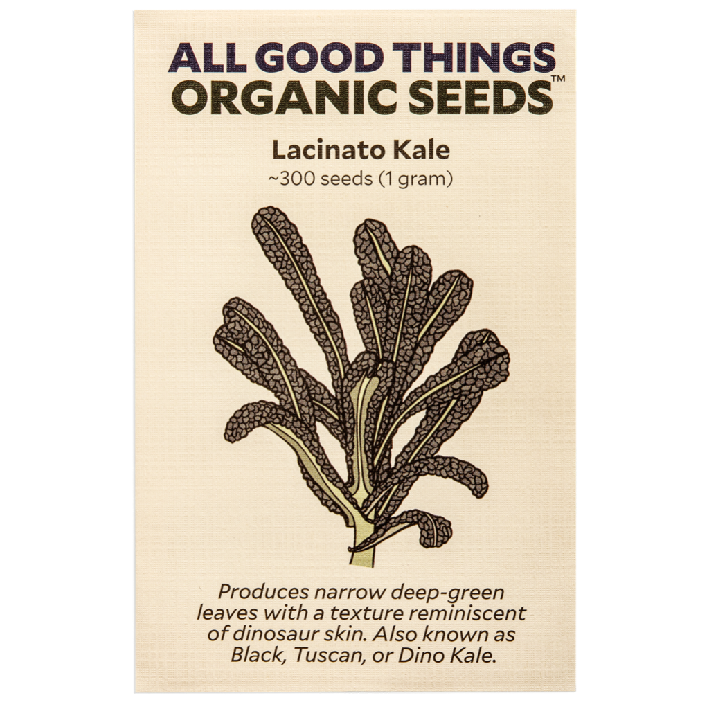 All Good Things Organic Seeds Lacinato Kale