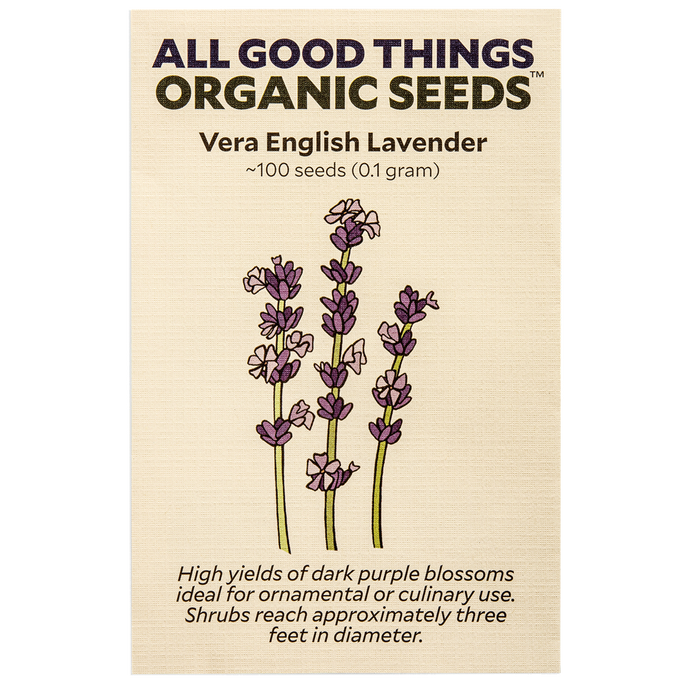 All Good Things Organic Seeds Vera English Lavender