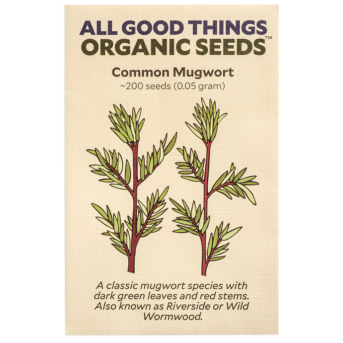 All Good Things Organic Seeds Common Mugwort