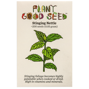 Plant Good Seed Stinging Nettle