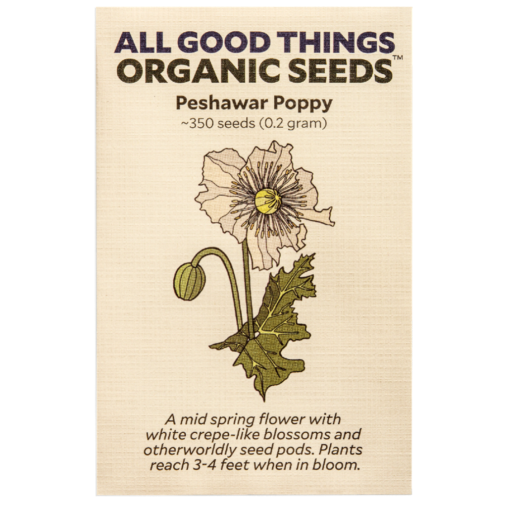 All Good Things Organic Seeds Peshawar Poppy