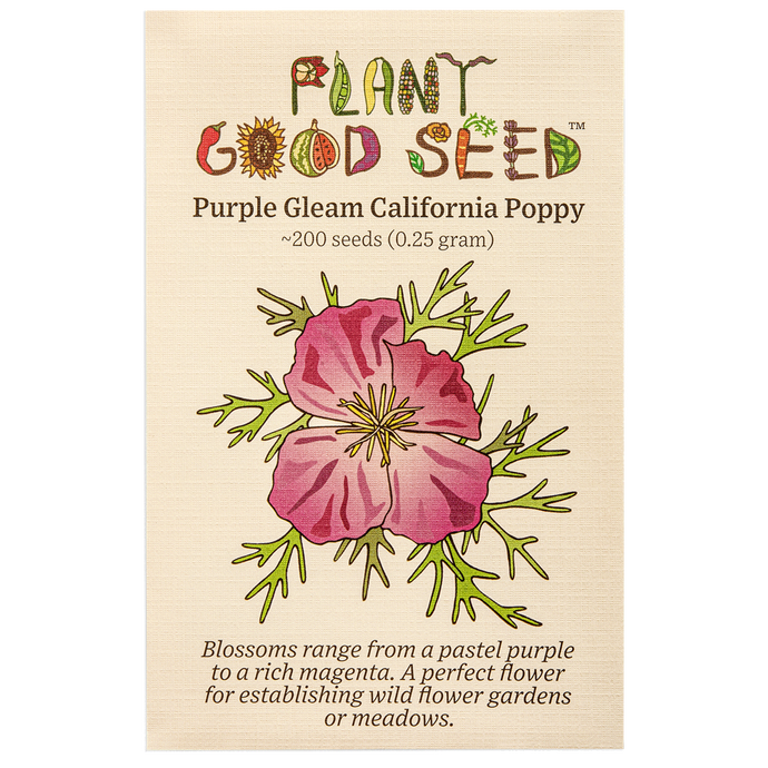 Plant Good Seed Purple Gleam California poppy