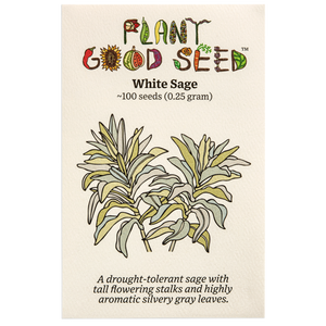 Plant Good Seed White Sage