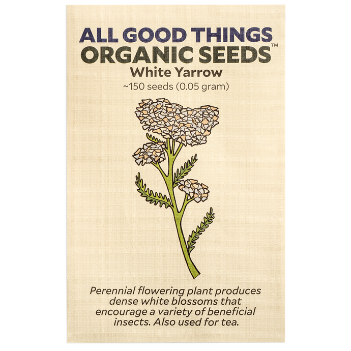 All Good Things Organic Seeds White Yarrow