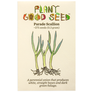 Plant Good Seed Parade Scallion