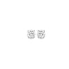14K Diamond Studs 1/4 ctw